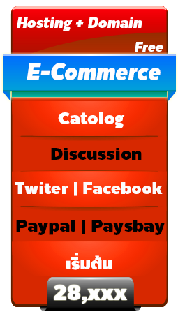 3E-Commerce